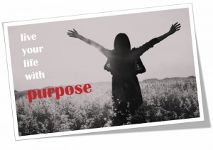 live your life with purpose (800x565)